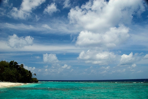 Beach View of a Maldives Iskand