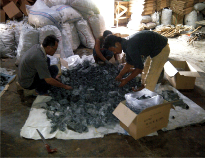 Investor for white charcoal producing in Semarang, Indonesia.